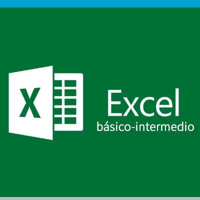 curso excel básico intermedio online